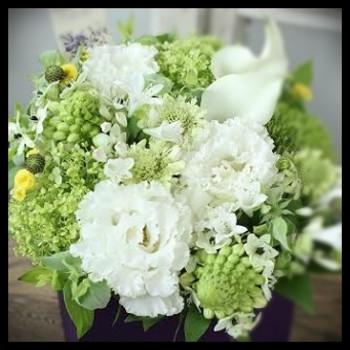 Rip_flower_2